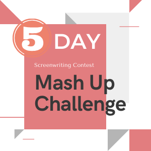FilmFesto 5-day Mash up Contest